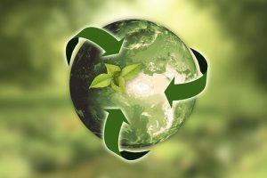 ecologia-vegana