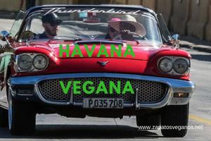 camila-vegana